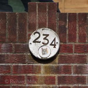 234 Hayling - May 2012 31 esq © resize