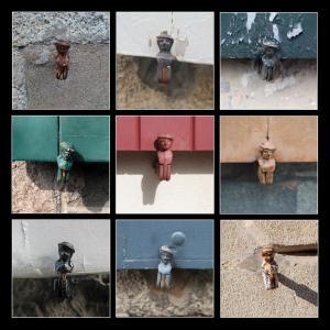 Grid 22 - Shutter Dogs 1 resize