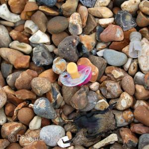 Hayling - March 2015 071 esq © resize
