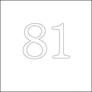 81 square 100