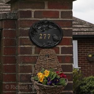 277 Burridge - April 2012 051 esq sm ©