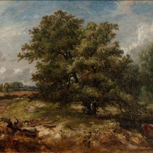 JAMES STARK-OIL PAINTING-BRITISH LANDSCAPE