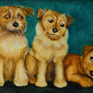 BERYL COOK OIL PAINTING DOGS