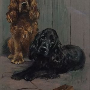 MABEL GEAR WATERCOLOUR DOGS SPANIELS