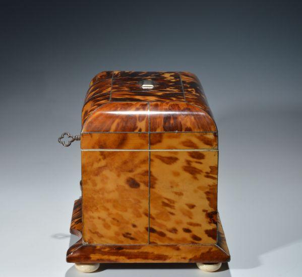 antique-tortoiseshell-tea-caddy-serpentine-front-DSC_3519_6184