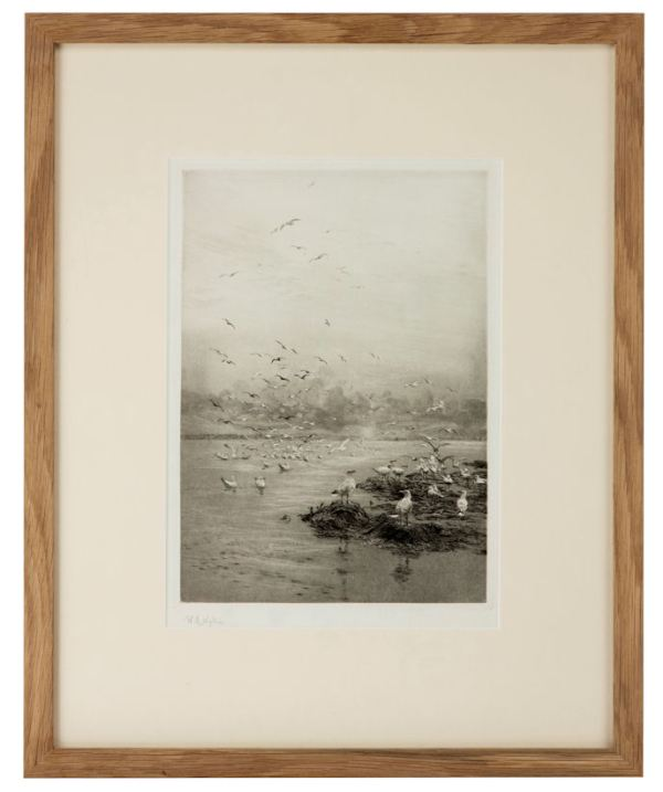 william-wyllie-etching-gulls-3782_1_3782