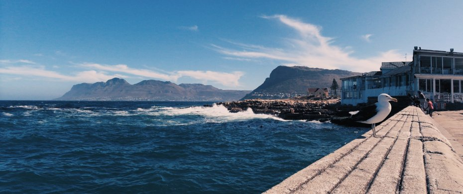 Video frame of Kalk Bay harbour, Cape Town, shot with the moondog labs anamorphic lens on an iPhone 7 Plus.