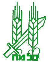 Palmach emblem