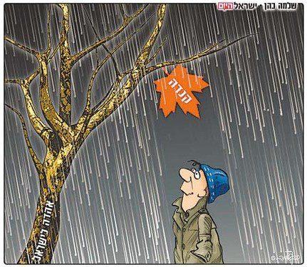 canada bds cartoon