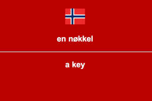 A customised Norwegian card in Anki