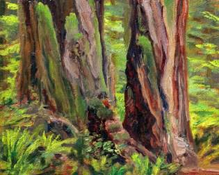 "Redwood Partners 8x10"""