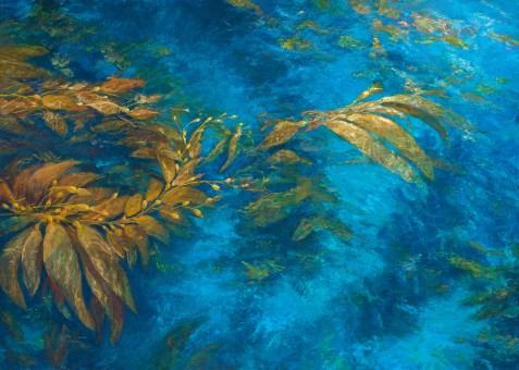 "Aqua Cove 56"" x 43"""