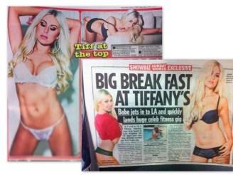 tiffany press collage