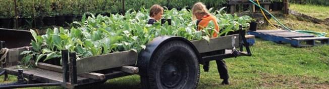 August Kids Farm