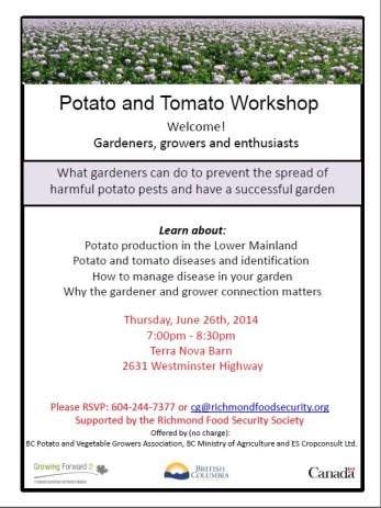 Potato and Tomato Workshop