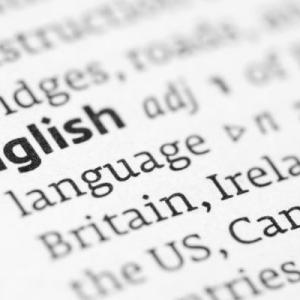 Should English Become the United States' Official Language?