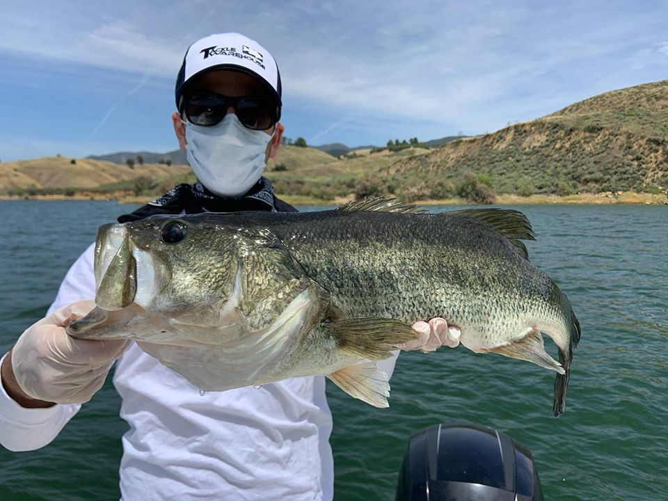 Southern California Bass Fishing Guide's Report 05/17/2020