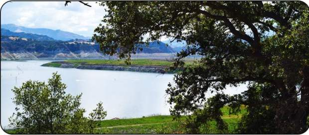 Lake Cachuma Fishing Guide