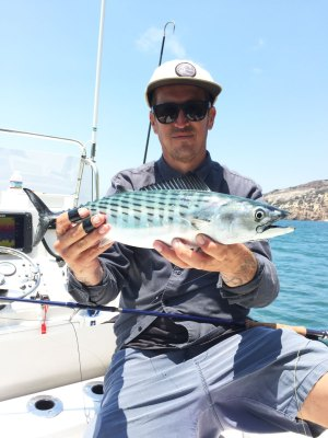 Southern California Saltwater Guide Trip 07-03-2018