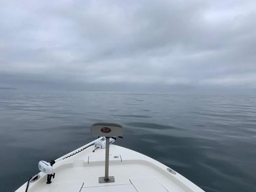 RTF Saltwater 6-18-2019 1