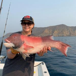 Southern California Fishing Guide's Report 09/07/2020