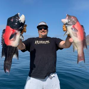 Southern California Fishing Guide's Report 09/24/2020