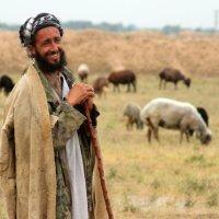 Herdar - andliga föräldrar