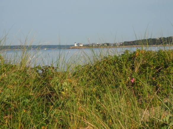 Looking out into Buzzards Bay.