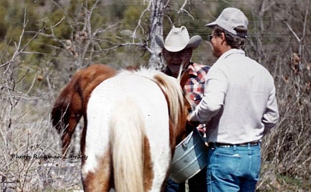 rickmanspanishmustangs.com, Rickman Spanish Mustangs, horses, Spanish Mustangs, Blackjack Mountain, Se Oklahoma, Gilbert Jones, stallion, mare, foals,