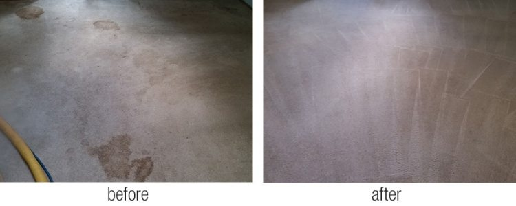 Residential And Commercial Carpet Cleaning Rick S Family Carpet Care