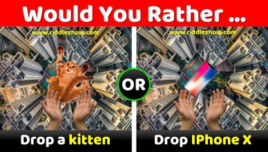 Would you rather game Riddlesnow.com
