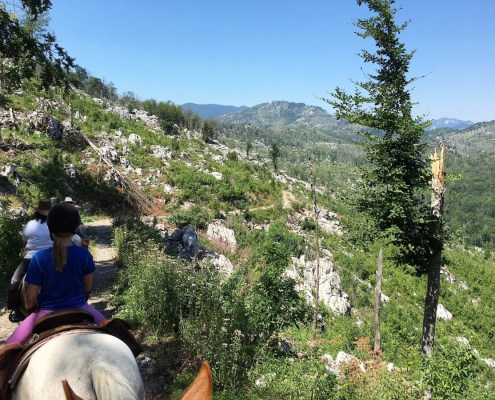 Linden Tree Retreat full day riding excursion