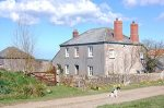 West Nethercott bed and breakfast
