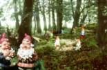 gnome reserve