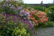 winsford_garden_border_original