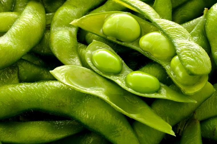 header990x660_FordtoFarm_soybeans2