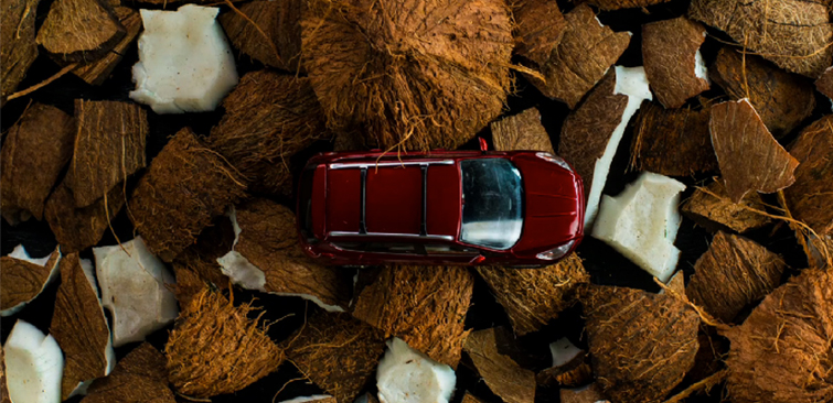 Coconuts are some of a materials that might be used in your Ford