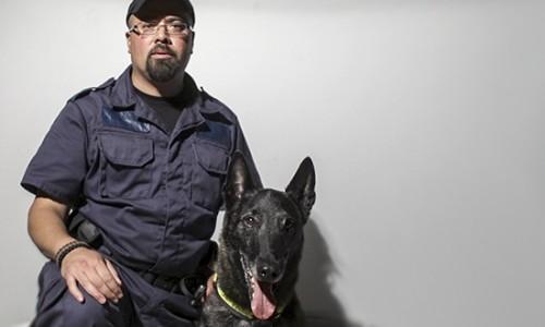 Ace, chien de sauvetage, se promène en F-150