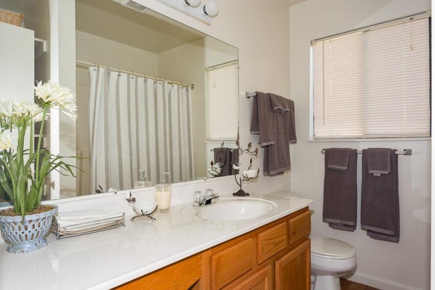 Ridgedale Townhomes Bathroom