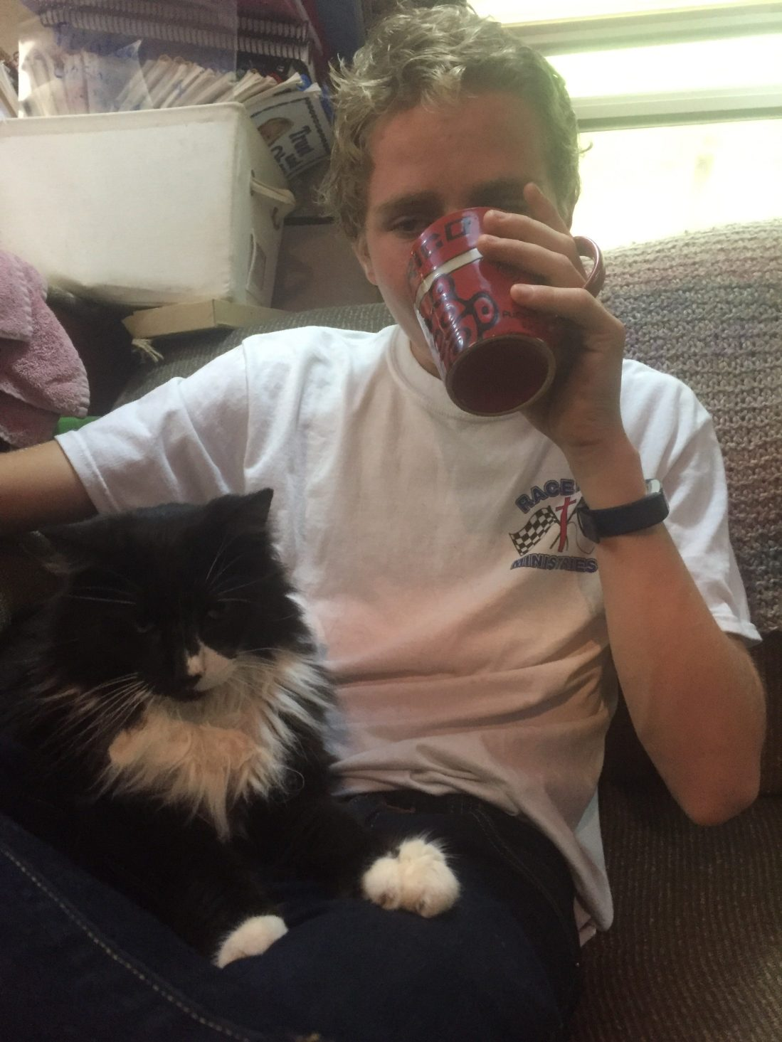Cat sitting on boys lap