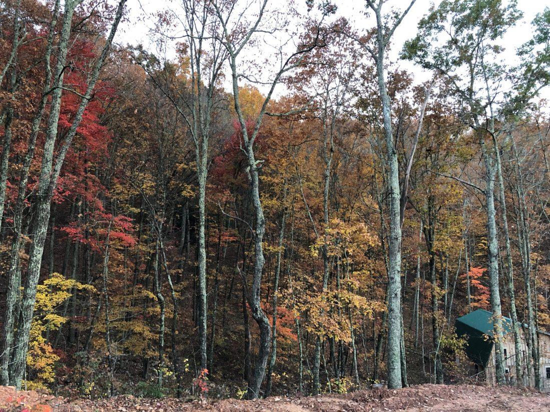 Ridge Haven Homestead