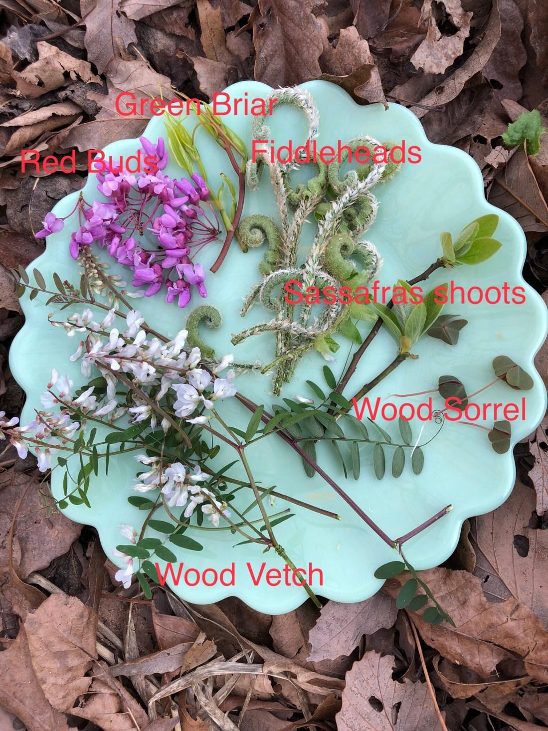 Wild edible plate