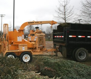 Every year, used Christmas trees are recycled into mulch at Freedom Ridge Park in Ridgeland.