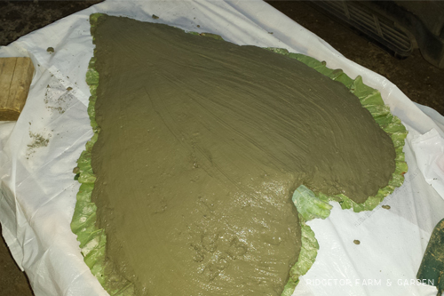 Cement Leaf apply cement2