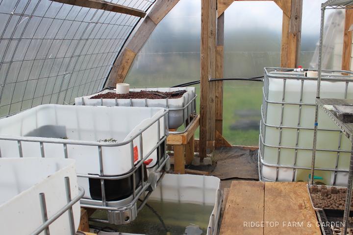 Ridgetop Farm & Garden | Aquaponics Update April 2014 | Layout