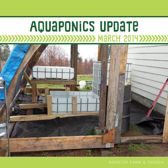 Aquaponics Update Mar2014 title