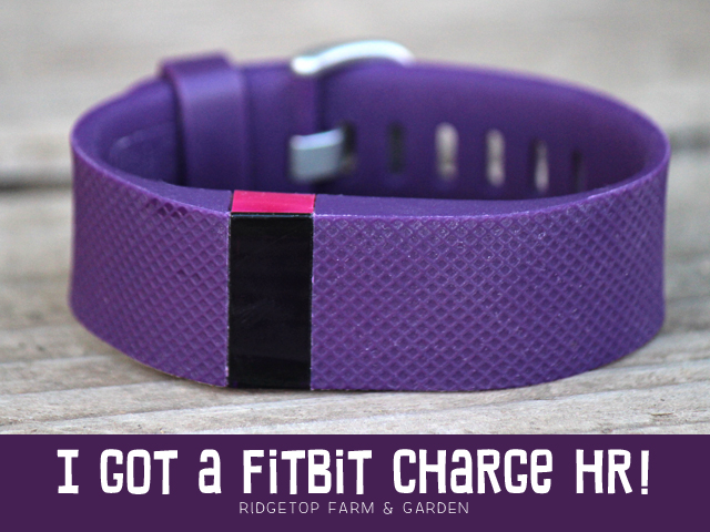 FitBit Charge HR title