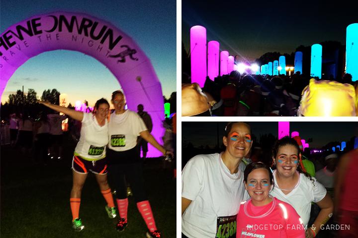 Neon Run Oct2013 1