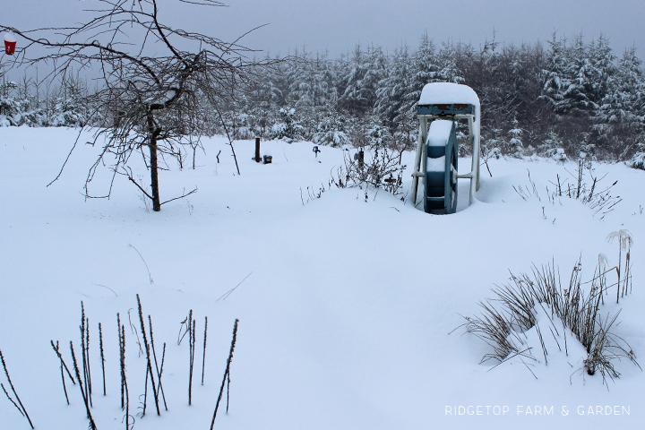 Snowpocalypse 6