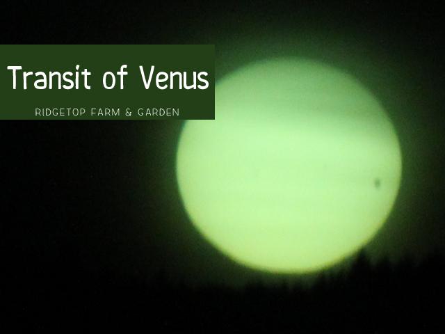Ridgetop Farm & Garden | Transit of Venus
